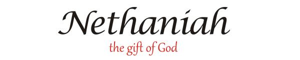 nethaniah-homepage-promo-heading